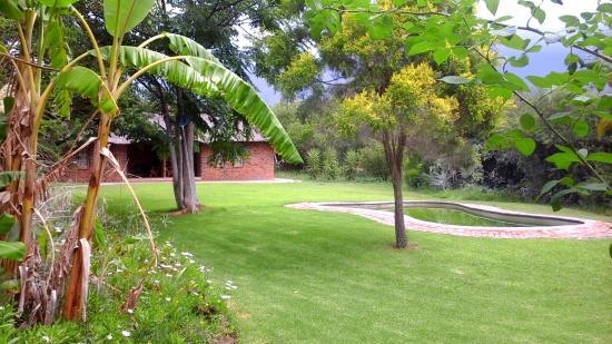 Southern Comfort Lodge: Pool Area