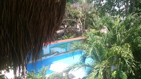 Hotel Casa Tucan Photo