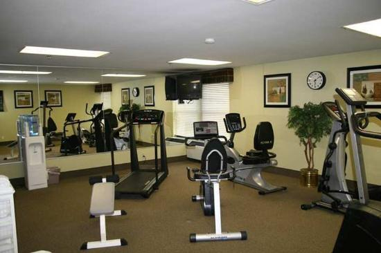 Hampton Inn Detroit Northville: Recreational Facilities