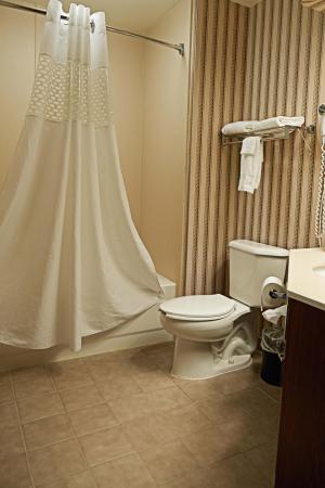 Scottsburg, Индиана: Fridge Bathroom