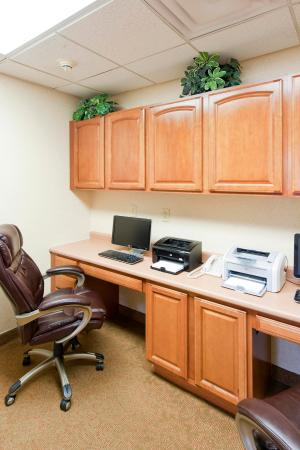 Hampton Inn and Suites-Chesterfield: Business Center