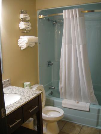 Super 8 Rapid City Rushmore Rd: Bathroom View