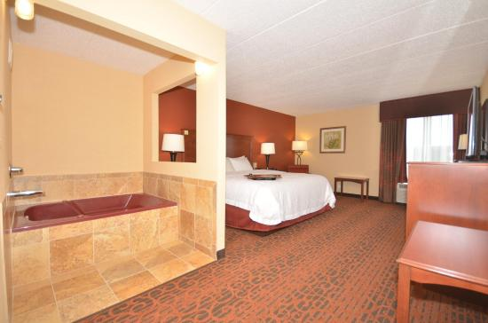 Hampton Inn Troy: King Whirlpool Room
