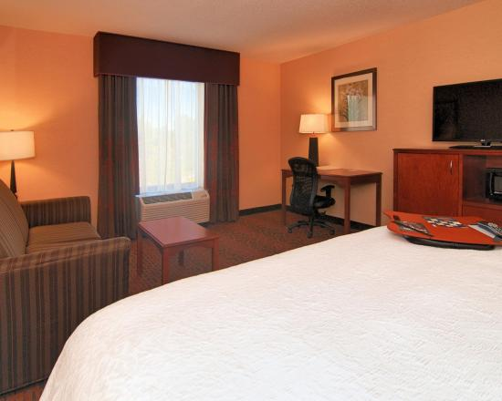 Hampton Inn Troy: King Room
