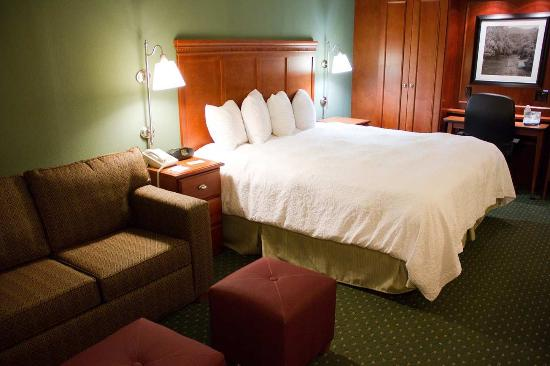 Hampton Inn Charleston - Downtown: King Room with Sofa