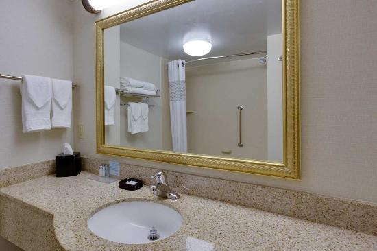 Hampton Inn Auburn: Accessible Bathroom