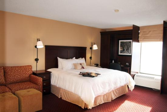 Hampton Inn Somerset: King Special Room