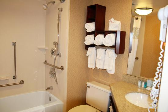 Hampton Inn Somerset: Double Double Accessible  Bathroom