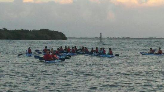 Best Bio Bay Kayak Tour Fajardo