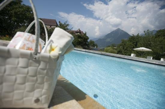 Baumgartner's Blumenhotel: Pool