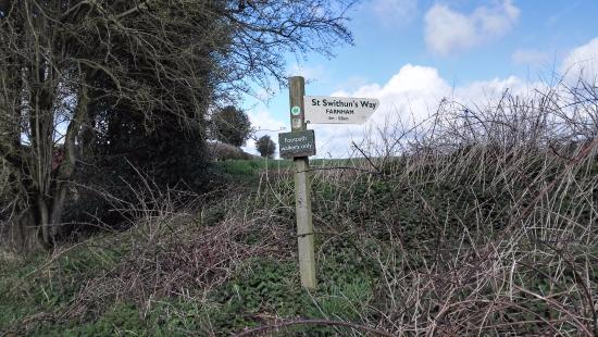 St. Swithun's Way