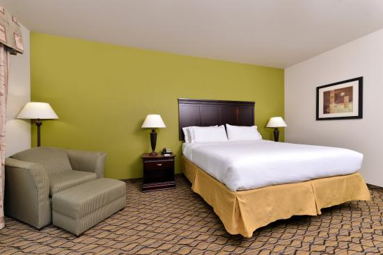 Holiday Inn Express Hotel & Suites Sherman Highway 75: Single Bed Guest Room
