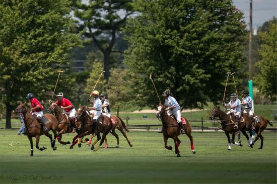 Oak Brook Polo Club