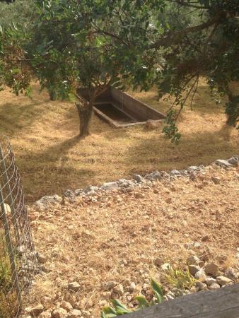 Volimes, Yunani: photo8.jpg