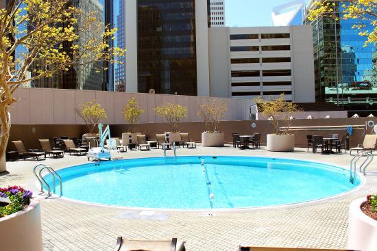 Omni charlotte review of omni charlotte hotel charlotte for Pool show charlotte