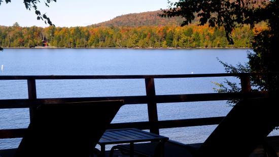 Cozy Moose Lakeside Cabin Rentals: Awe-Inspiring