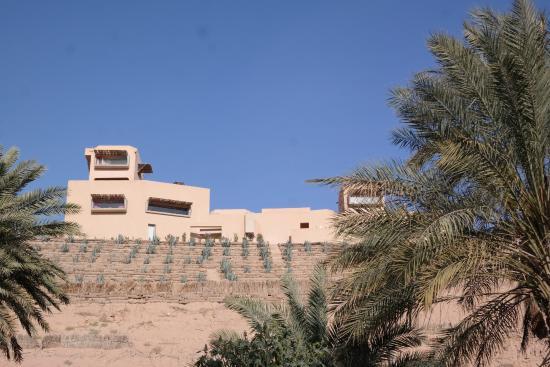 Dar Hi: vue de l'hotel depuis la palmeraie