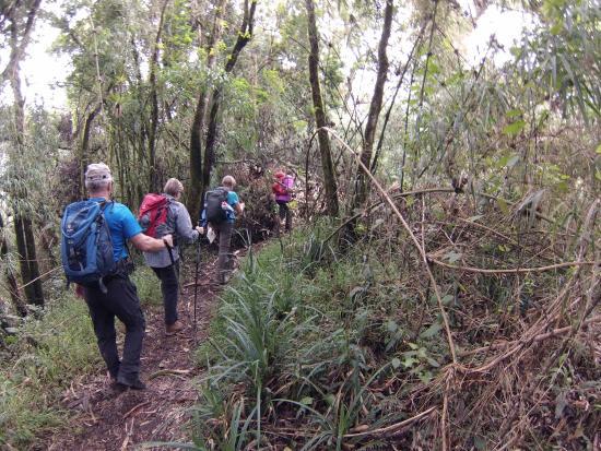 Pasochoa Forest Reserve: Senior Trip