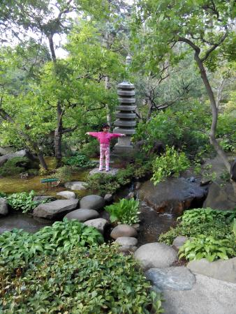 picture of anderson japanese gardens rockford tripadvisor. Black Bedroom Furniture Sets. Home Design Ideas