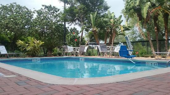 BEST WESTERN Town Center Inn: Refresh and relax pool side