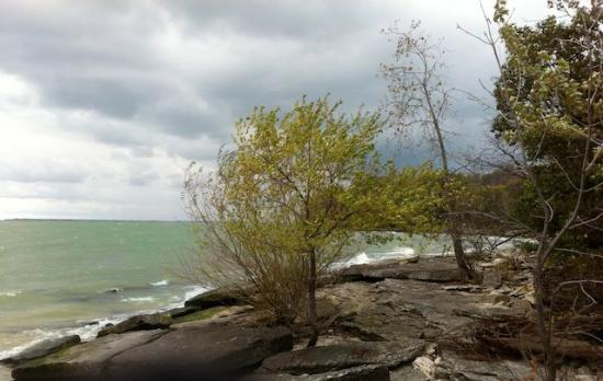 Kelleys Island, OH: North Shore and the Alvar