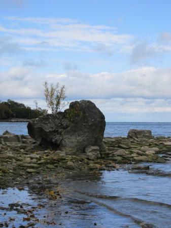 Kelleys Island, OH: Lake Erie Rocks
