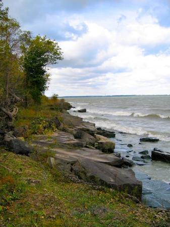 Kelleys Island, OH: Alvar on the North Shore
