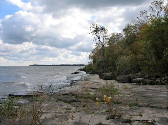 Kelleys Island, OH: Alvar on the North Shore 2