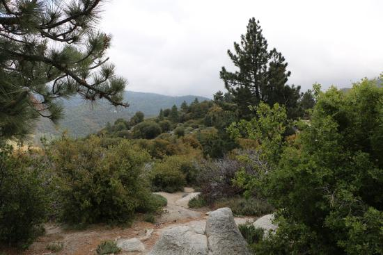Idyllwild, Californie : Indian Vista Overlook