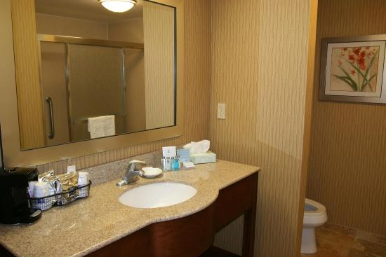 Hampton Inn & Suites Exmore - Eastern Shore: Standard King Bathroom