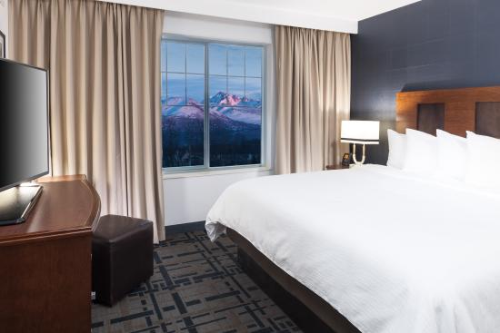 Embassy Suites by Hilton Anchorage: Mountain view room