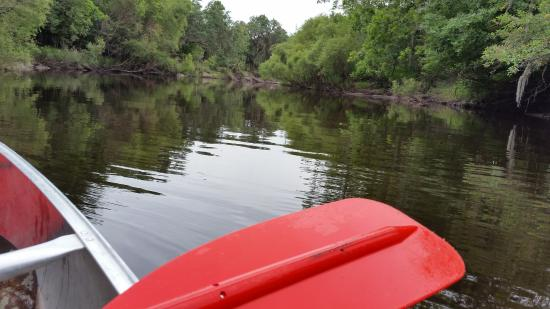 Peace River Paddle Sports & Kuleana Adventures - Day Trips: Peace River, FL