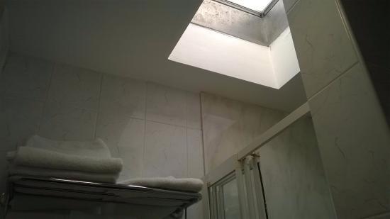 Maples House Hotel: Skylight in bathroom
