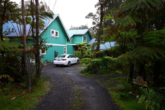 driveway into bamboo orchid cottage b b picture of lava pond lodge rh tripadvisor com bamboo orchid cottage hawaii Parrot Orchid