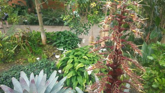 Matthaei Botanical Gardens & Nichols Arboretum照片