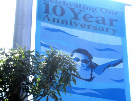 Celebrating 10 Year Anniversary - Stillman Aquatic Center, Newark, CA