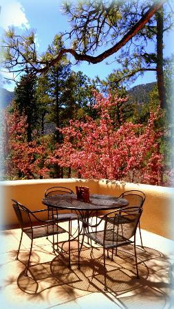 Cascade, CO: Front Courtyard Patio with Mountain Views
