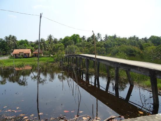 Thai Tan Tien Resort 사진