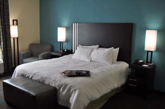 Pleasanton, Τέξας: 1 King Bed Guest Room