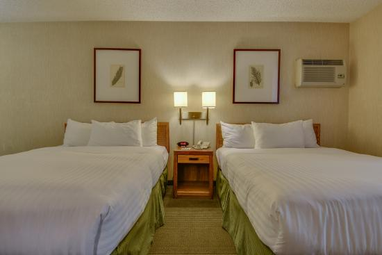 Vagabond Inn Los Angeles at USC: Two Queen Beds 3