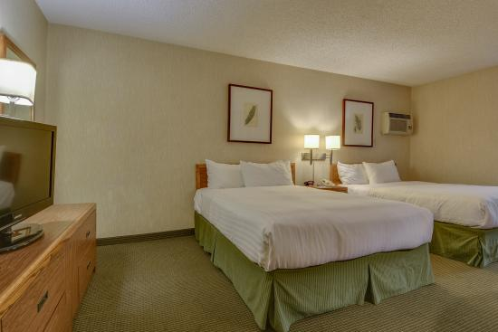 Vagabond Inn Los Angeles at USC: Two Queen Beds 5