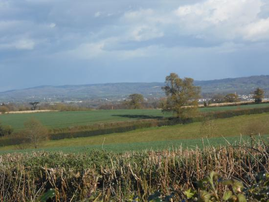 Langford Budville, UK: Wonderful walks in stunning Somerset countryside