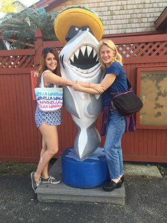 Sharky's Cantina: photo0.jpg