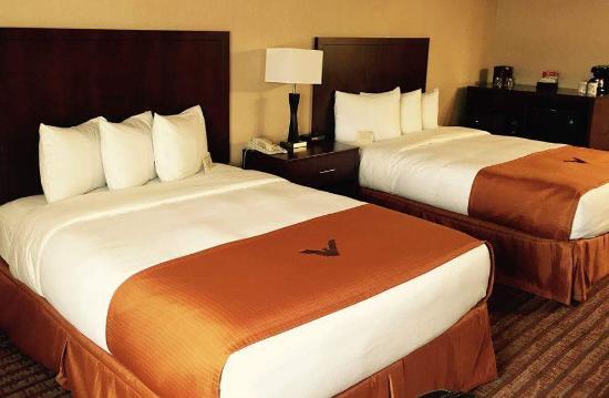 Phoenix Inn Suites Albany: Double Queen Suite