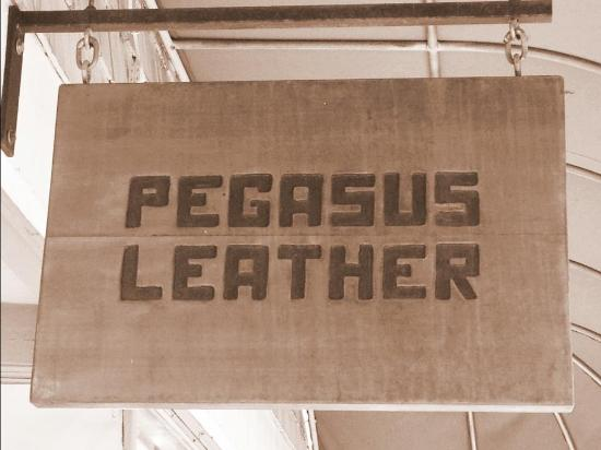 Pegasus Leather