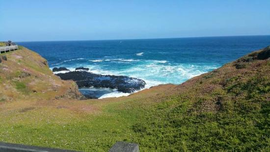 Phillip Island, Australia: Beautiful view from Nobbies....