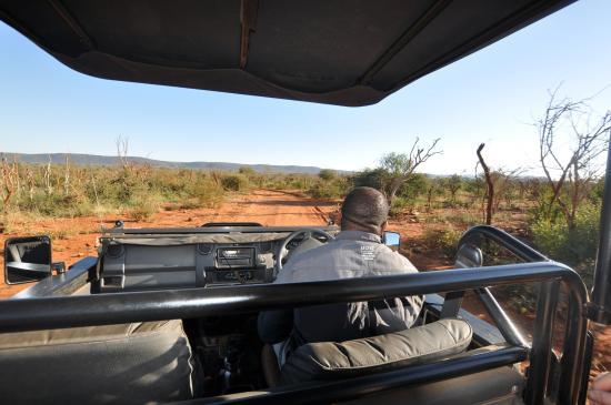 Foto Madikwe Safari Lodge