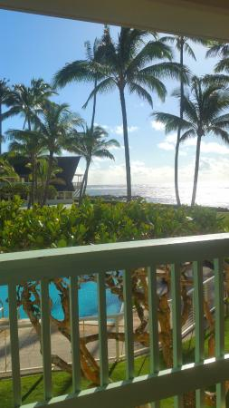 Mokihana: Note: Some rooms on the 2nd floor will have Frangipani trees partially block your view