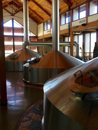 New Belgium Brewing: photo1.jpg