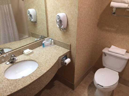 Hampton Inn Chicopee/Springfield : Clean and nicely appointed bathroom